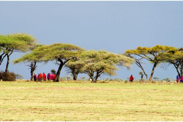 Africa, Tanzania, Masais