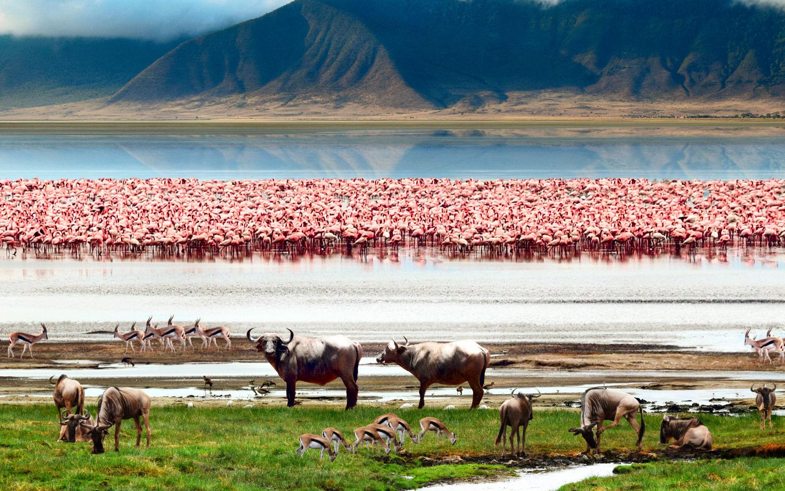 Parque Nacional de Manyara