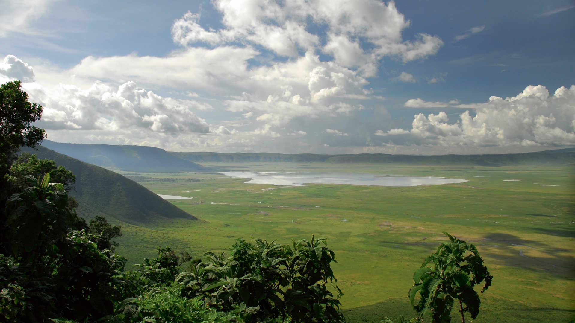 Africa, Tanzania, Crater Ngorongoro, safari
