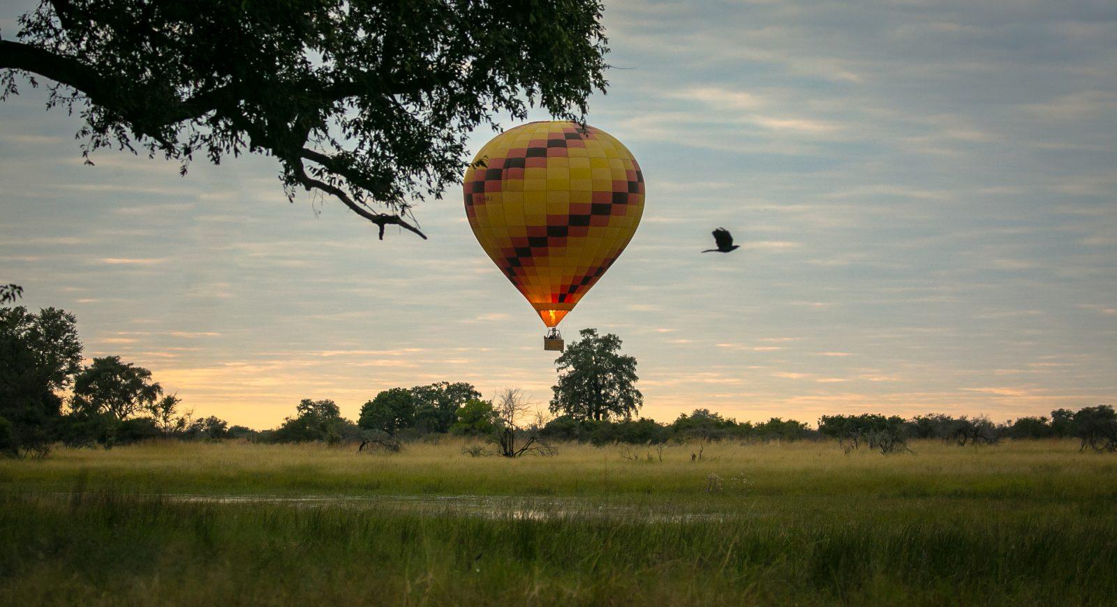 Africa, Botswana, Delta del Okavango