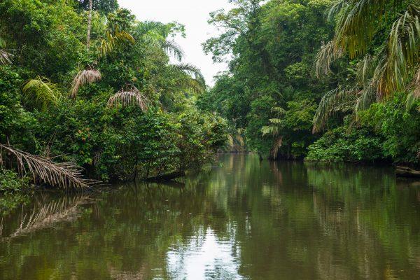 América, Costa Rica, Tortuguero